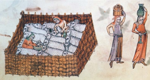 Sheep_pen_(Luttrell_Psalter)
