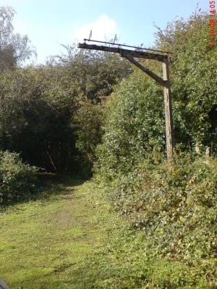 mislingford_yard